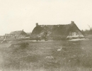 Boerderijen op het stuifzand rond 1900